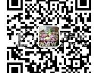 染料厂公司宿舍,文昌街,地理位置优越,滨北学区房,简装,带储藏室