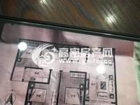 独家一手,菲达广场现房15楼高层5555一平,3室117平米77万住宅