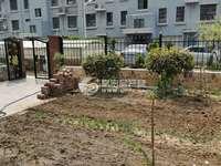 出售绿苑小区一楼带院3室2厅1卫115平米100万住宅