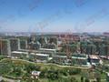 红高粱·公园里工程进度