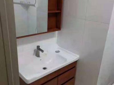 出租中百公寓1室1厅1卫50平米1000元/月住宅